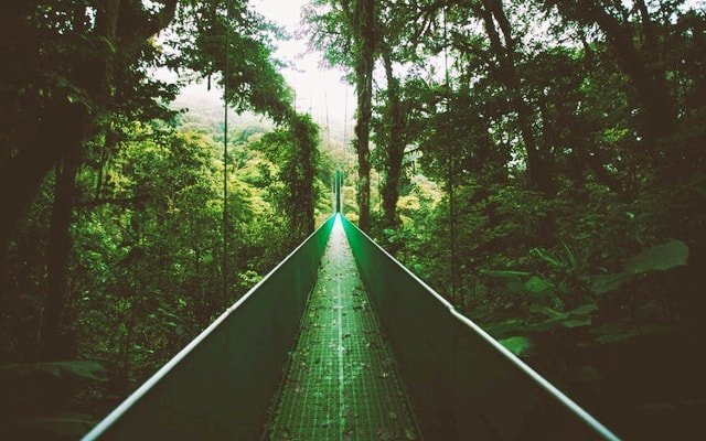 14 Awesome Things to Do in Costa Rica When It Rains